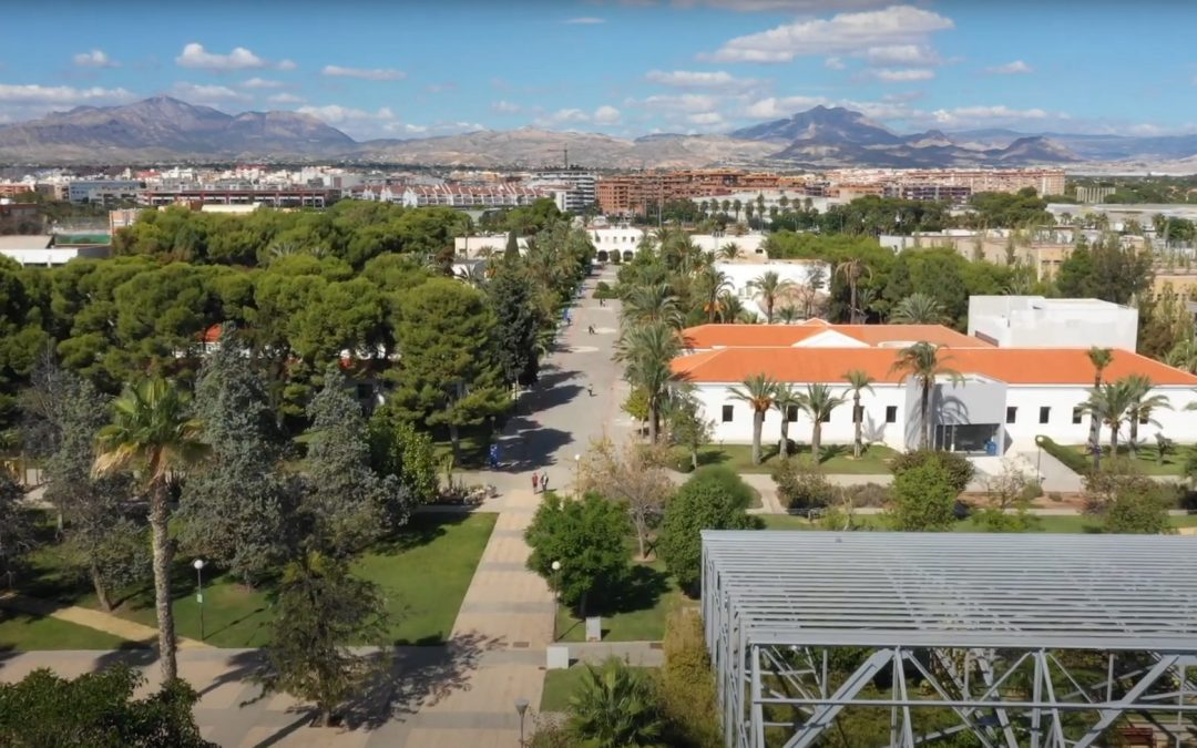 """""""Plants with a History"""": a botanical tour of the University of Alicante campus"""