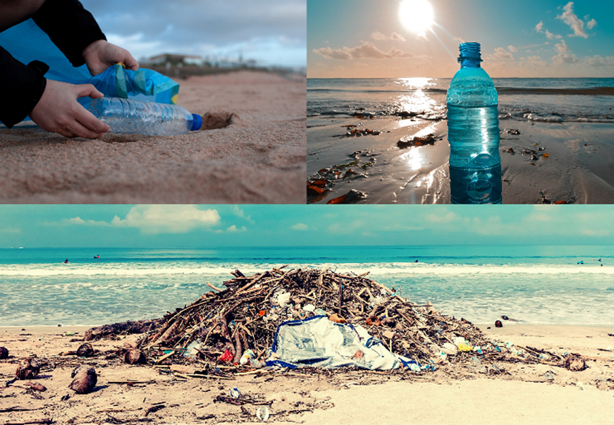 Keep plastic out of our sea: Discover the life cycle of a plastic bottle and how to not dump it in the sea thanks to Circular Economy