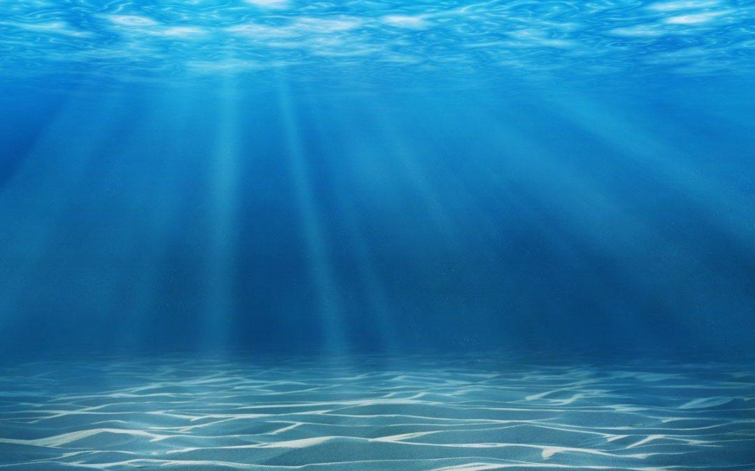 Taller de robótica submarina